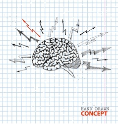 Hand drawn brain on school paper vector image vector image