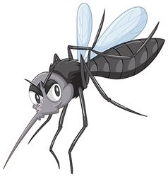 Wild mosquito in black color vector