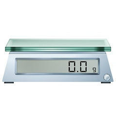 A digital weighing scale vector image