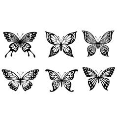 Beautiful butterflies in monochrome style vector image