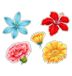 Sticker set with different types of flowers vector image vector image