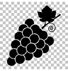 Grapes sign  flat style black icon on vector