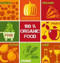 Organic produce icons vector