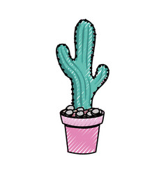 cactus in potted vector image