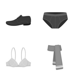 Male shoes bra panties scarf leather clothing vector