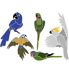 Set of parrots icons vector