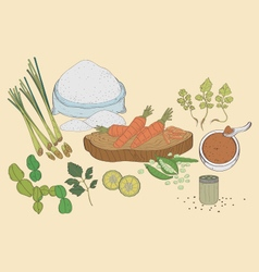 Spices vegetable vector