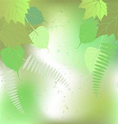 Floral background - plant leaves vector image