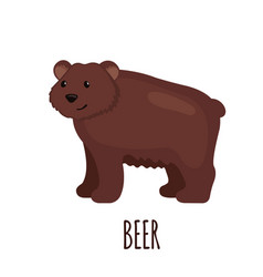 Cute bear in flat style vector
