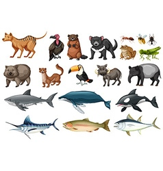 Set of different types of wild animals vector