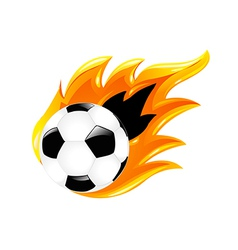 Two soccer balls vector