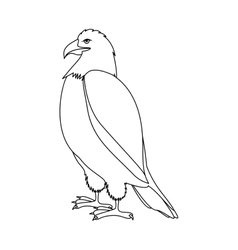 contour eagle in standing position vector image