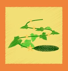 Flat shading style plant cucumis vector