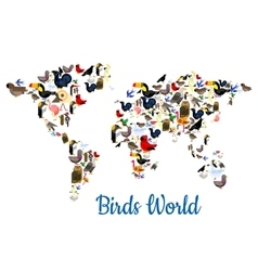 Birds world map with continents vector