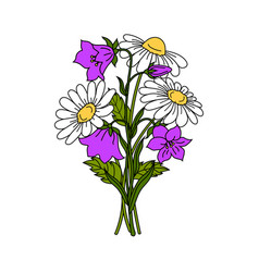 beautiful flowers on white background vector image vector image