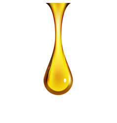 Golden oil drop isolated on white vector