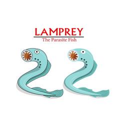Lamprey parasite fish in cartoon design vector