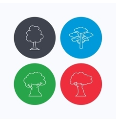Pine tree oak-tree icons vector