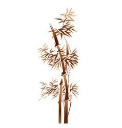 chinese bamboo vector image