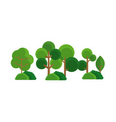 Tree bush forest natural image vector