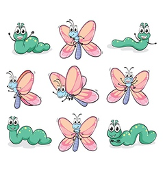 A caterpillar and a butterfly vector image