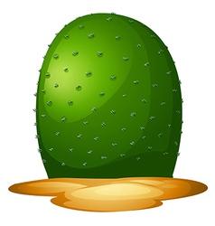 A plain cactus vector