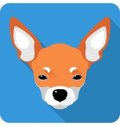 Dog chihuahua icon flat design vector