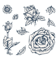 Flowers vector