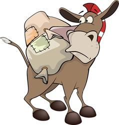 little burro Cartoon vector image