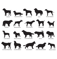 set of dogs silhouettes vector image