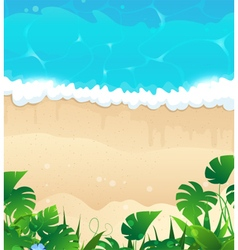Tropical ocean shore vector