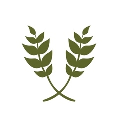 Leaf nature icon image vector