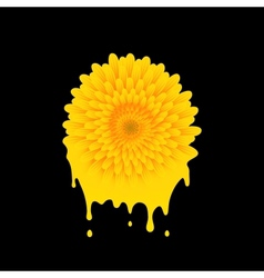 Paint color of a flower vector