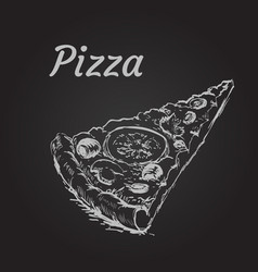 Pizza slice isolated vector