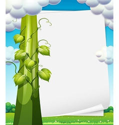 Banner with beanstalk vector