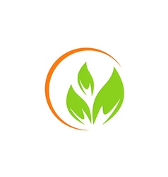 leaf vegetarian abstract green logo vector image vector image