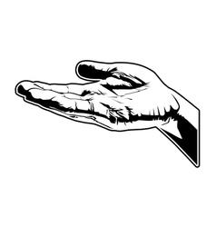 Open hand vector