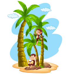 Growth chart ruler with two monkeys on tree vector