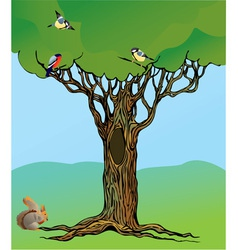 Fairy-tale rooted oak tree vector