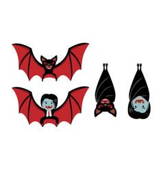 Vampire bat and dracula on white cartoon vector