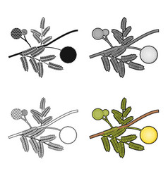 Yellow mimosa flower icon in cartoon style vector