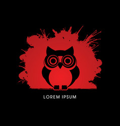 owl front view vector image