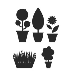 Home plant and tree vector