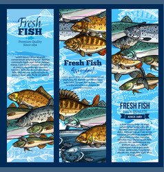 banners of fish catch for sea food maket vector image vector image