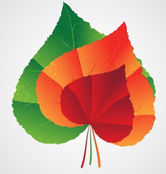 leafs heart shape vector image