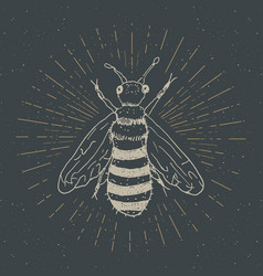 Vintage label hand drawn bee grunge textured vector