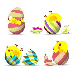 Eggs hatch vector