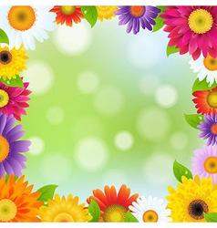 Color Gerbers Flower Frame vector image vector image