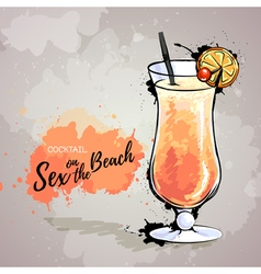 cocktail sex on the beach vector image