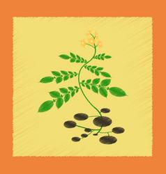 Flat shading style plant solanum vector